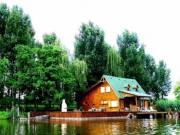 Sárbogárd közelében eladó  58 000 m2  halastó erdővel