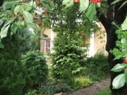 II/a. kerület Erzsébet-ligeten egyedi hangulatú ház eladó. - Budapest II. kerület, Erzsébetliget