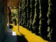 Eladó ház Ercsiben-2534