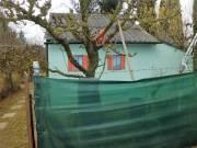 572 m2-es kiskert 15 m2-es kis házzal Szombathely Parkerdő