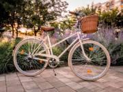 Eladó női kerékpár. Vintage kosaras bicikli. Vintagebringa