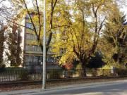 Eladó Hotel Szentendrén NAGYON jó áron - kiváló üzleti befektetés!
