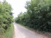 Balatoni panorámás szőlőterület - Alsóörs