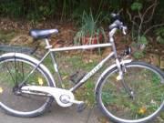 Wheeler Cytrek 1700 Mobility Comfort kerékpár eladó! fotó