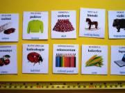 Aktuális hirdetés!  660 db-os képes angol-magyar szókártya babáknak, gyerekeknek