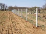 Vadháló Drótfonat drótkerítés kerítésdrót beton kerítés oszlop építés kerítésépítés