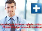 Fül-orr-gégész munka Svédországban