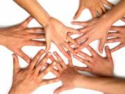 Önkéntes Támogató gyűjtőt keresünk!
