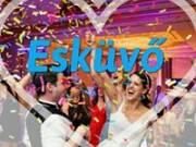 Esküvői Deejay és Zeneszolgáltató
