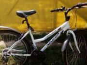 Eladó egy nauzer nelson nöi kerékpár fotó