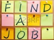 HR, Emberi erőforrás, Munkaügy területén keresem leendő munkahelyemet