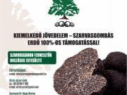 TELEPÍTSEN SZARVASGOMBÁS ERDŐT 100% OS ÁLLAMI TÁMOGATÁSSAL