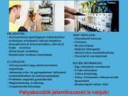 Elektromos karbantartót keresünk!