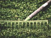 Kerti munka,kertgondozás,kertrendezés