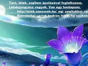 http://lelek.nanoweb.hu/_egi_segitokkel_valo_munka