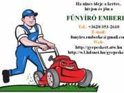 Fűnyírást, fűkaszálást, kertfenntartást vállalok! - Budaörs