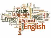 Angol és francia nyelvű szövegek lektorálása