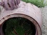 Rendelésre!kézzel készített kerámia kaspók,amfórák beültetve mini sziklakeretnek vagy (üresen)