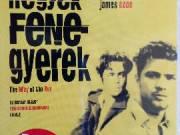 HULLAHEGYEK, FENEGYEREK Benicio Del Toro Ryan Phillippe Juliette Lewis DVD