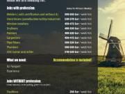 Holland munkalehetőség
