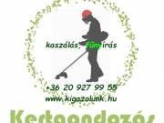 Zöldterület kezelés, fűnyírás, kaszálás