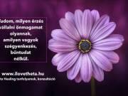 Theta Healing alaptanfolyam BUDAPEST - 2019. szeptember 25-27. - ilovetheta.hu