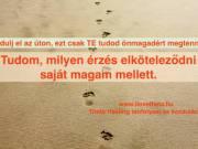 Theta Healing alaptanfolyam BUDAPEST - 2019. szeptember 9-11.- ilovetheta.hu