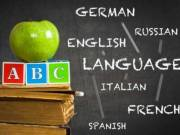 Nyelvoktatás Székesfehérváron