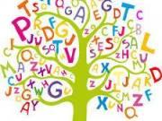 Felvételi előkészítő magyar nyelvből ill. német nyelvből általános iskolás diákoknak