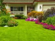 Idős néni segítségére lennék kertes házában