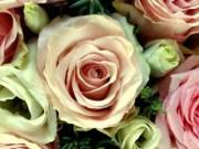 Nőnapi virágküldés Kaposvár és 60km-es körzetében! Virág Kaposvár Virágüzlet.