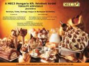 A MEC3 Hungaria Kft. felvételt hirdet TERÜLETI KÉPVISELŐ  pozícióra