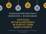 Csomagszortírozókat keresünk Budapest több kerületébe azonnali kezdéssel!!
