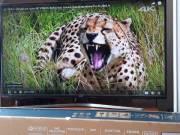 Samsung 4K UHD Smart 50