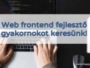 Web frontend fejlesztő gyakornokot keresünk!