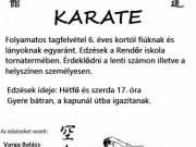 Karate Oktatás