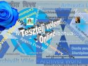 Tesztelj Velem Online!
