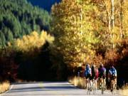 Kerékpáros túratárs keresés